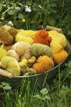 How To Dye Fabric, String Art, Dyeing Yarn, Wool, Knitting, Yarns, Garden, Plants, Pattern