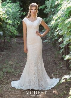 Style TR11975 from Mon Cheri Modest is an allover corded lace fit and flare modest bridal gown that has cap sleeves, a soft V-neckline, a zipper back, and a lace cage skirt with a sweep train. Ideal for a destination or casual wedding.