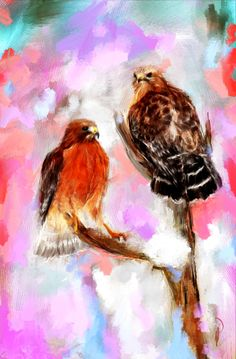 Hawks in love - Click here http://www.thesunthemoonthestarsandmaya.com/2014/03/hawks-in-love/ FREE SHIPPING $5 off Buy this Print click  http://society6.com/RichOkun/Hawks-in-love_Print#1=45 #dogs #Puppy #poems #love #art #Spiritual