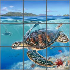 hawaiian Sea Turtle Tile Mural | Pacifica Tile Art Studio