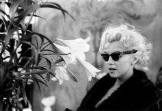 Marylin Monroe photographed by Ed Feingersh at Elizabeth Arden Salon, New York City, March, 1955 Marylin Monroe, Fotos Marilyn Monroe, Milton Greene, Football Usa, Brigitte Bardot, Divas, Elizabeth Arden, I Love Cinema, Greta