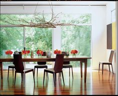 modern dining room by TaC studios, architects... hung branches.