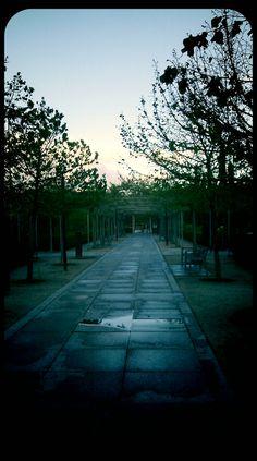 Paseo por el parque de Plaza Castilla tras la lluvia de primavera de esta tarde / CYII - instantes de Madrid