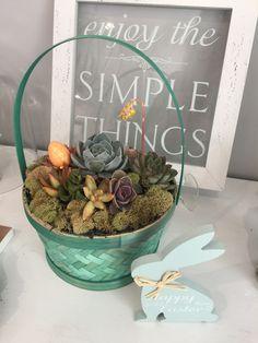 Succulent Easter basket