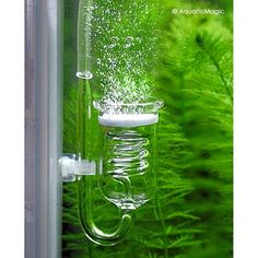 Rhinox Spio III CO2 Diffuser - Glass Reactor for Aquarium Plants #Rhinox