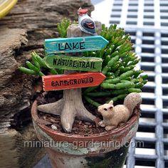 Which Way: #fairygarden #fairyhouses