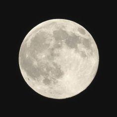 https://flic.kr/p/wHxnJq | Blue Moon #moon #月 #canon #PowerShot #G3X