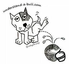 www.understand-a-bull.com - Breed Specific Legislation (BSL)