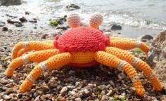 Krabbe Kokosnuss