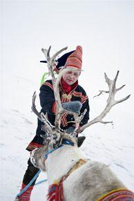 Sami with reindeer in Finnmark, Norway - Photo: Terje Rakke/Nordic Life/www.visitnorway.com