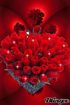 Gorgeous Bouquet of Red Roses gif ~ Collection of pictures, click the picture to see them.