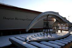Inupiat Heritage Center, Alaska