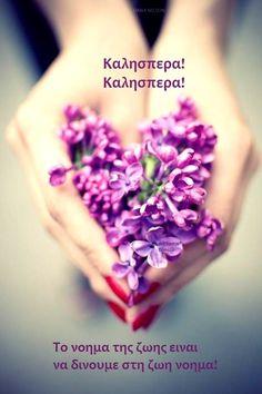 Good Afternoon, Greek Quotes, Sage, Google, Salvia