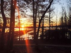 Lake D'Arbonne State Park is a 655-acre park in northern Louisiana.
