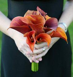 Google Image Result for http://cf.ltkcdn.net/weddings/images/slide/106277-382x400-burntorange11.jpg