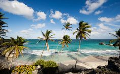 Caribbean Flight Deal