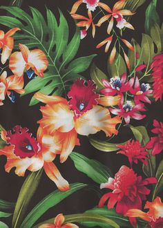"Wana'ao - Barkcloth Hawaii ""Vintage"" Tropical Botanical Vintage Hawaiian Fabric Hawaiian Fabrics Hawaiian Tropical Botanical Vintage Hawaiian Fabric Leaves, Torch Ginger and Hibiscus flowers on a cotton broadcloth apparel fabric."