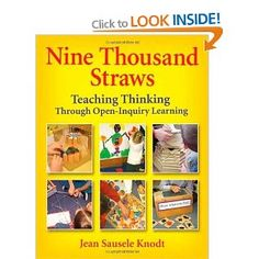 Nine Thousand Straws: Teaching Thinking Through Open-Inquiry Learning: Amazon.ca: Jean Sausele Knodt: Books
