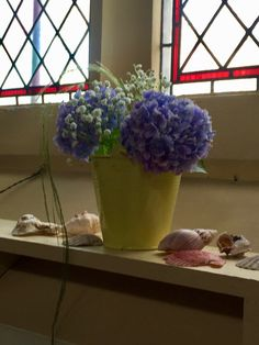 We gave a sea feel to all six windows, with buckets of frothy gyp and blue hydrangeas