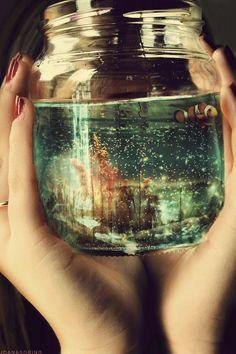 An underwater world...<3