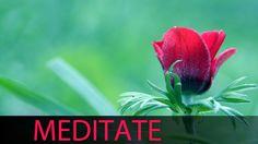 3 Horas Música Meditação Xamânica: Purificador Chakra Tibetano, Música M...