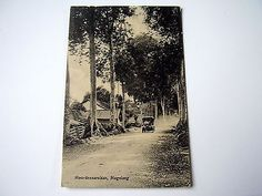 Lovely Old Ppc: Indonesia~Java~Magelang~Moordenaarslaan~Animated + Old Car