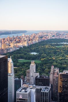 Central Park, NYC ❤️