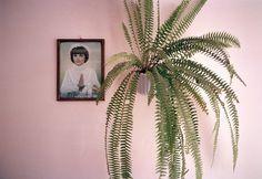 Pink Beata, 2004 © Jessica Backhaus