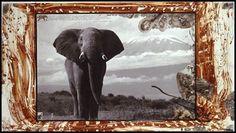 Peter Beard- photographer  Google Image Result for http://www.mediabistro.com/unbeige/files/original/peter%2520beard.jpg