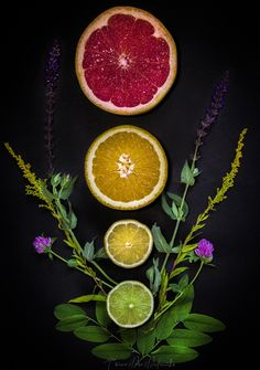 Citrus mix part 2. Photo by ©Timea Mia Medveczki