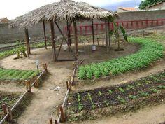 irrigação hortas caseiras - Google Search