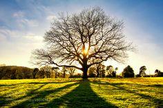 Light and Shade. by david1pugh via http://ift.tt/1qYXxHU