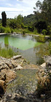 Piscine naturelle - Natural swimming pool - Orion Saint Paul de Vence