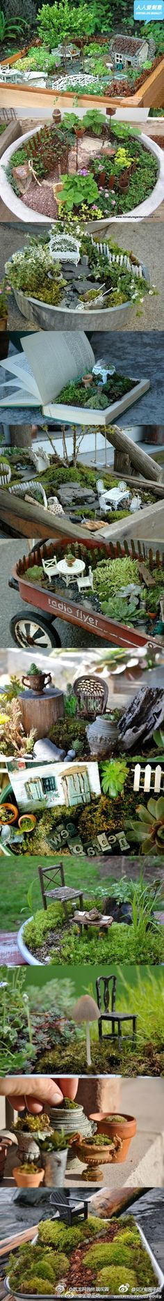creative miniature gardens, pictures only