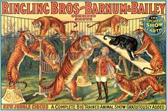 Vintage Posters - Ringling Bros and Barnum Bailey Big Trained Animal Show Circus Posters - Circus Posters
