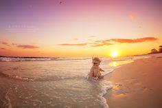 baby juliana | 6 month session | kansas studios | kansas pitts photography