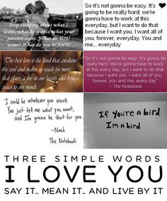 love quotes from the notebook Love Quotes from the Notebook that is Romantic