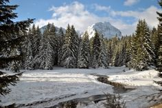 Winter Scene, Z ..