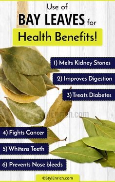 Bay leaves are a magical herb and it has so many health benefits. In this article, we will share with you some bay leaf benefits for health, skin & hair. Calendula Benefits, Matcha Benefits, Coconut Health Benefits, Cabbage Health Benefits, Bay Leaf Benefits, Heart Attack Symptoms, Tomato Nutrition, Nutrition Club, Stomach Ulcers