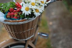 bicycle basket filled with summer The Murmuring Cottage