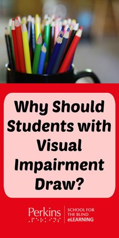 An overview of the benefits for students with visual impairments to draw in science classes