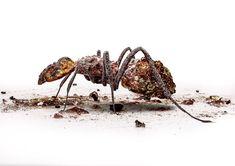 Ознакомьтесь с этим проектом @Behance: «Doom Insects» https://www.behance.net/gallery/60595301/Doom-Insects