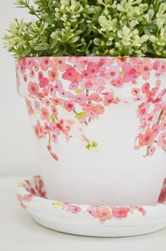 You don't have to be crafty to make these beautiful torn tissue planters. so easy and so pretty! Flower Pot Crafts, Clay Pot Crafts, Crafts To Do, Home Crafts, Crafts For Kids, Plate Crafts, Painted Clay Pots, Painted Flower Pots, Spring Crafts