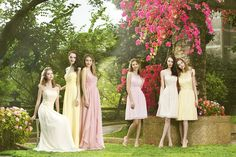 Gorgeous bridesmaids dresses--lots of lace--lots of colors.  Most are available in 55 colors.  We have what you need.