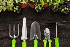 Photo about Gardening tools and plants on land. Image of botanical, blooming, flowerbed - 56983404 Cedar Garden, Lawn And Garden, Home And Garden, Garden Trowel, Garden Tools, Above Ground Garden, Citrus Oil, Garden Maintenance, Garden Quotes