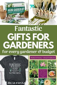 Need some great gift ideas for the gardeners on your list? Here are loads of inexpensive and splurge gifts gardeners will love! #giftideas #garden #gifts #gardensupplies #holiday #gardeninggifts #ecofriendly Perennial Vegetables, Natural Garden, Green Gifts, Cleaning Recipes, Garden Supplies, Organic Recipes, Gardening Tips, Make It Simple, Best Gifts