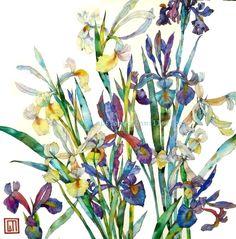 Japanese Irises by Sofia Perina Miller
