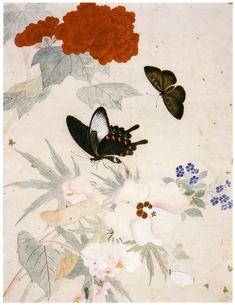 봄입니다. 나비가 날아 왔습니다.