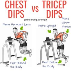 Chest Dips vs Tricep Dips: Which Exercise is Better? – Underdog Strength Trainin… – Fitness And Exercises 30 Day Workout Plan, Chest Workout At Home, Full Body Workout Routine, Best Chest Workout, Chest Workouts, Chest Exercises, Body Workouts, Fitness Workouts, Dip Workout