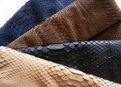 python skin all colors!